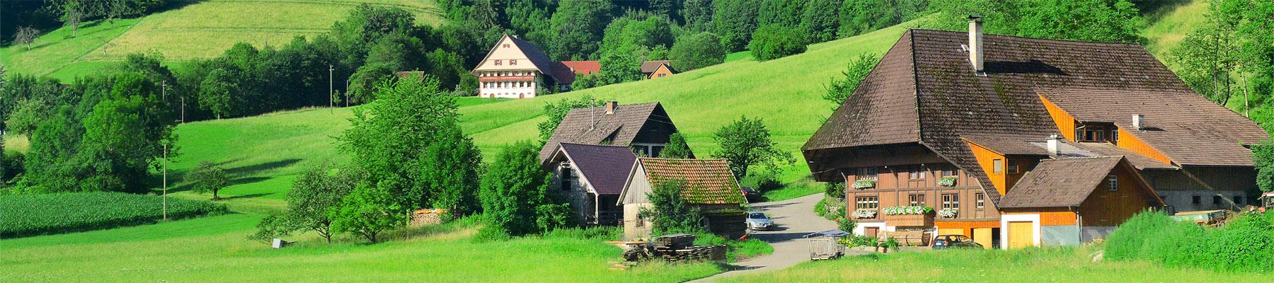 Bild von Urlaub auf dem Bauernhof