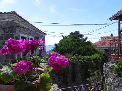 """Bild """"Marianthi"""" in Molivos auf Lesbos"""